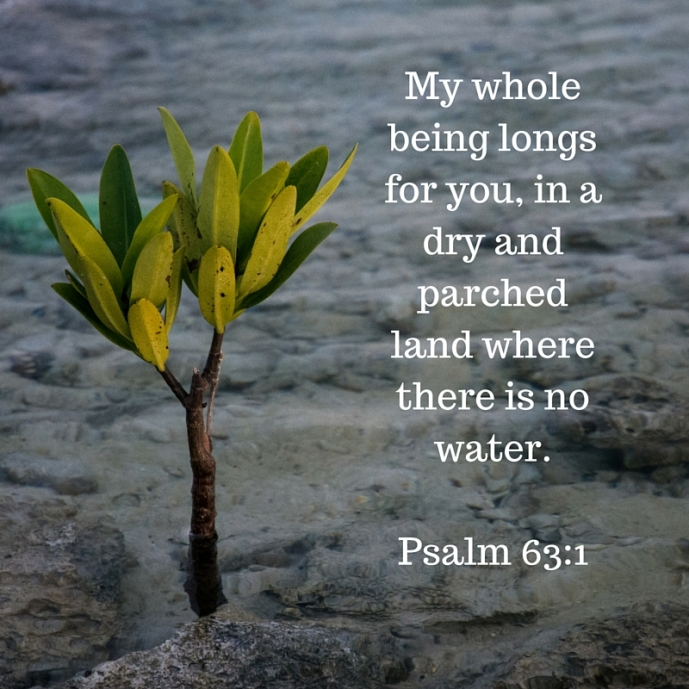 my whole being longs for you, in a dry and parched land where there is no water.Psalm 63-1